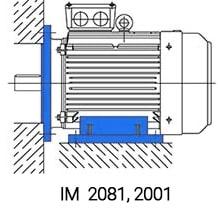 АИР315М4 IM2081 комбинированное исполнение