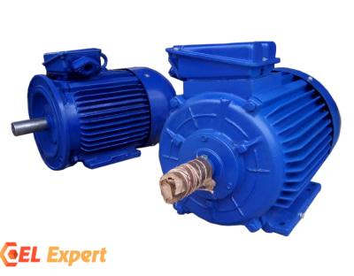 Электродвигатели 4А200L8, 4АМ 200L8, 5АМ 200L8 |